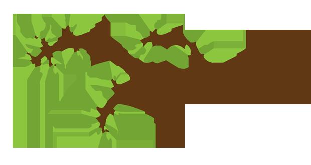 شاخه و برگ