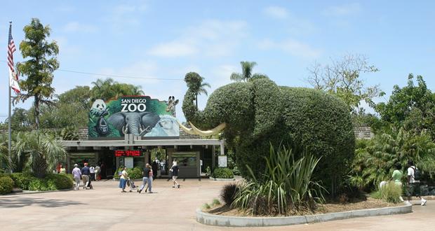 چگونه باغ وحش درست شد؟