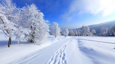 برف چگونه به وجود می آید و چرا رنگ برف سفید است؟