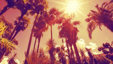 چرا رنگ اجسام در آفتاب می پرد؟