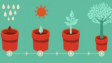 استراتژی های شروع کسب و کار از نگاه برایان تریسی