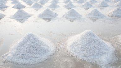 چگونه از آب دریا نمک استخراج می شود؟