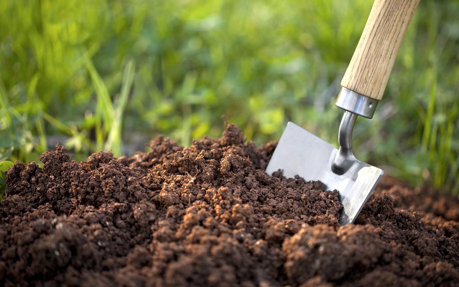 خاک چگونه به وجود می آید؟