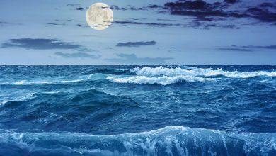 جزر و مد چگونه به وجود می آید؟