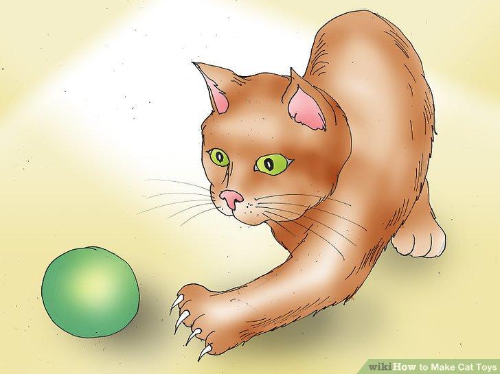 استفاده از توپ پینگ پونگ به عنوان اسباب بازی برای گربه ها
