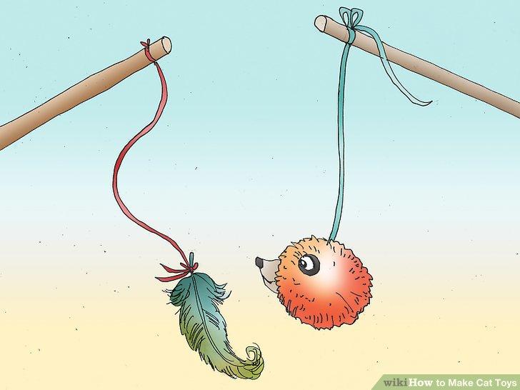 استفاده از پَر برای بازی با گربه ها
