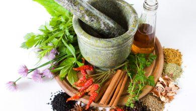 اهمیت و کاربرد گیاهان دارویی