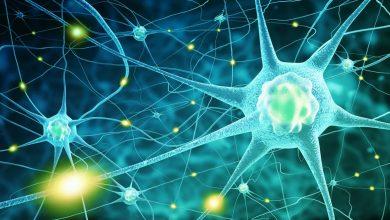 کشف داروی NLY01 برای کُند شدن روند پیشرفت پارکینسون