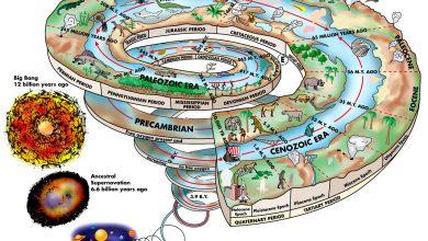 شناخت زمین و ادوار آن