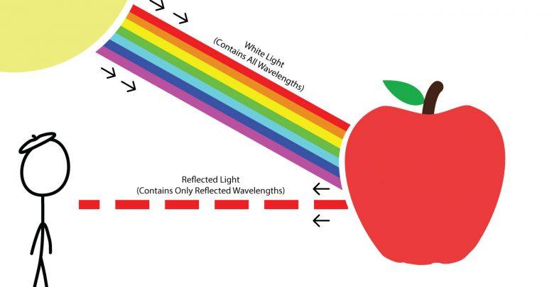 چرا اشیاء را رنگی می بینیم؟