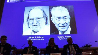 برندگان نوبل پزشکی 2018 چه دستاوردهایی داشتند؟