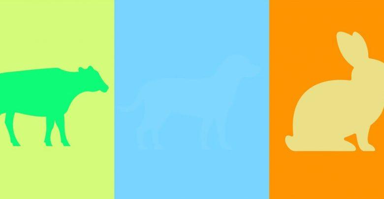 آیا جانوران می توانند رنگ های مختلف را تشخیص دهند؟