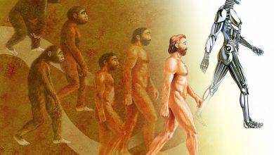 نگاهی به نظریه های تکاملی داروین