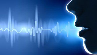 انسان چگونه سخن می گوید؟
