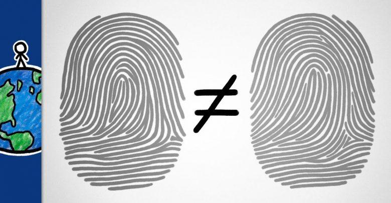 آیا اثر انگشت دو نفر می توانند شبیه به هم باشند؟