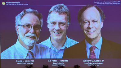 برندگان نوبل پزشکی 2019 چه دستاوردهایی داشتند؟