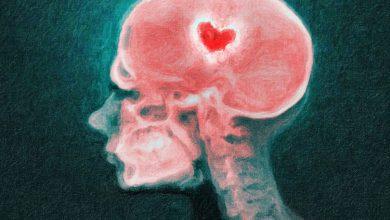 چگونه مغز، درد دل شکستن را می فهمد؟