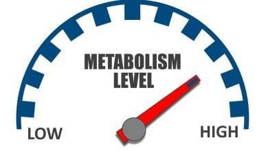 متابولیسم و ایست وزنی چیست؟